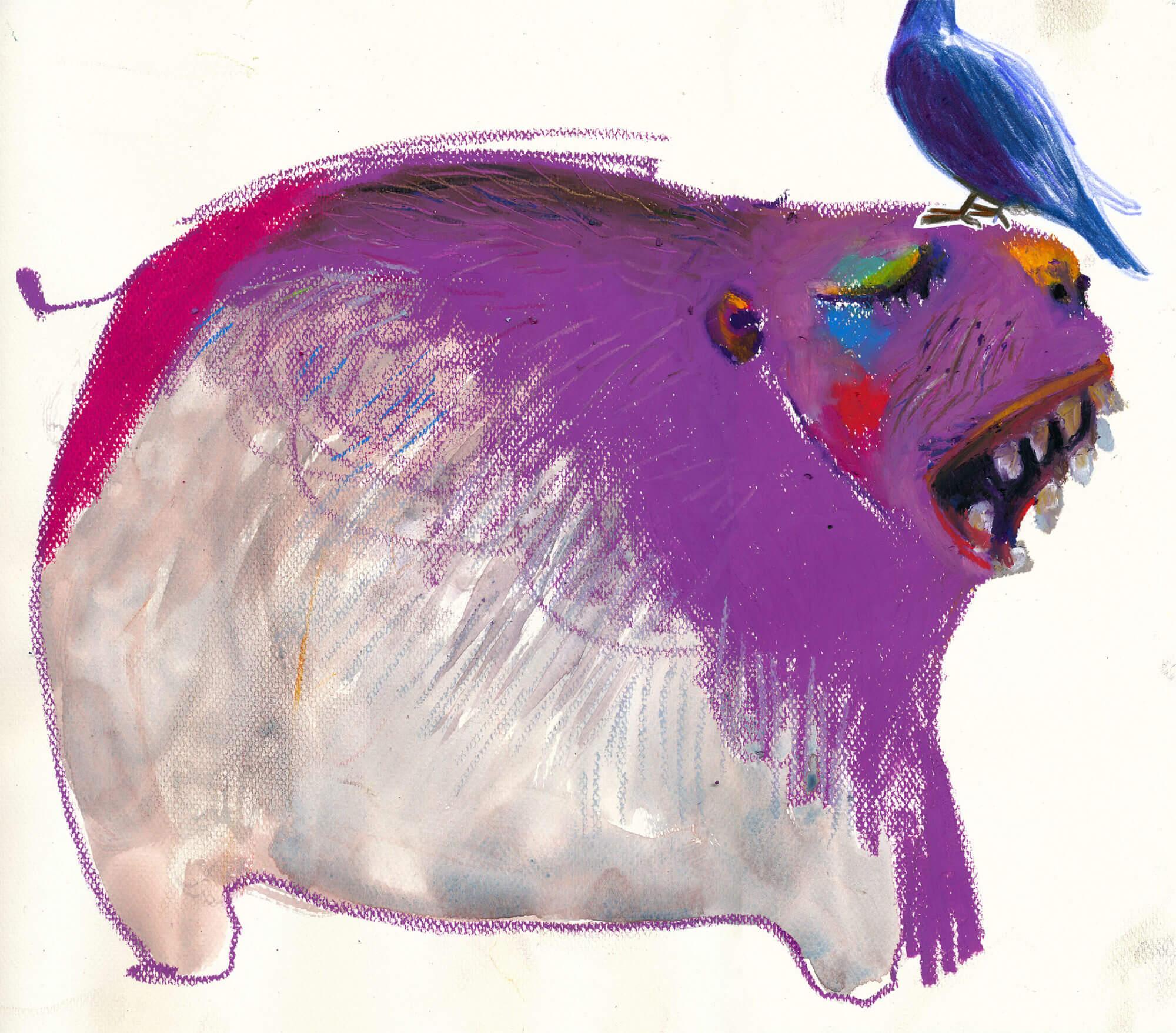 GUINEA PIGS I MET